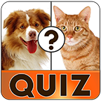 Free english vocabulary quiz